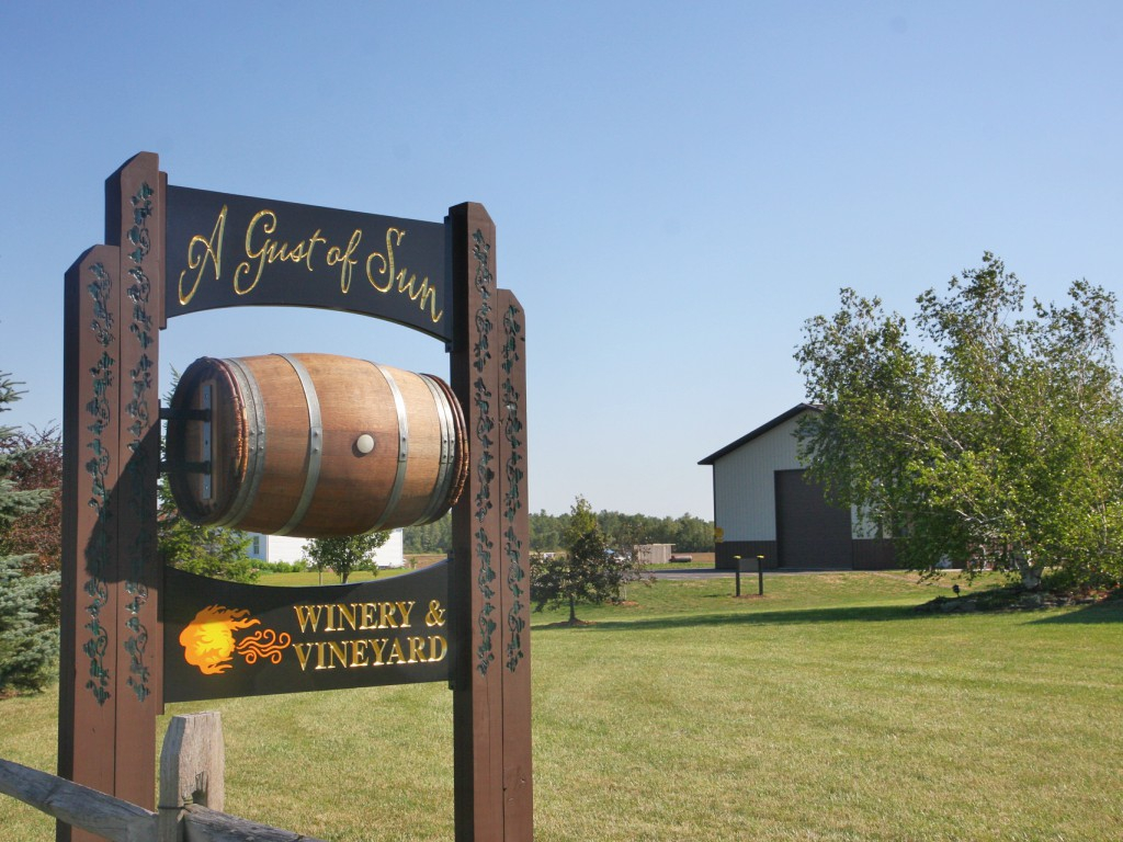 A Gust of Sun Winery & Vineyard - Ransomville